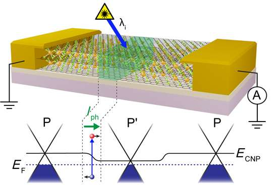 A way to engineer photoactive junctions in iron-chloride-intercalated graphene using a laser