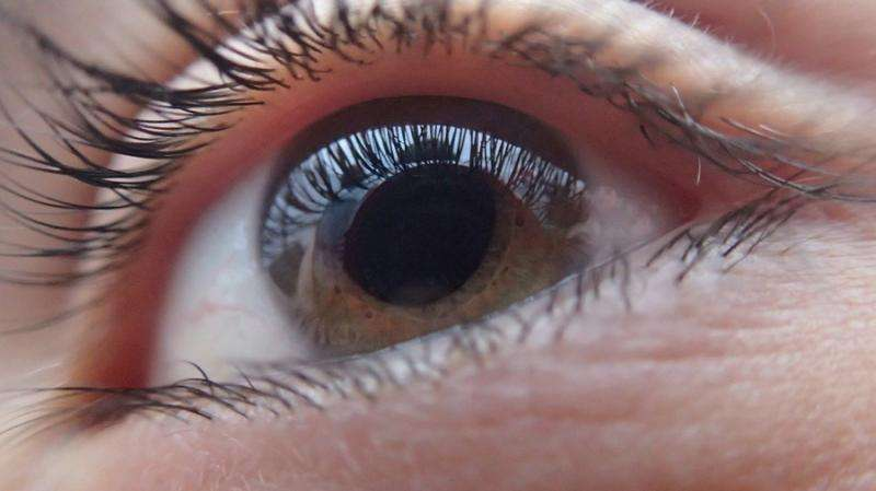 Combination of type 2 diabetes and sleep apnoea indicates eyesight loss within four years