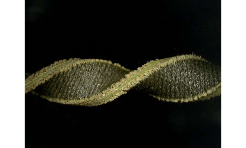 Soft and stretchy fabric-based sensors for wearable robots