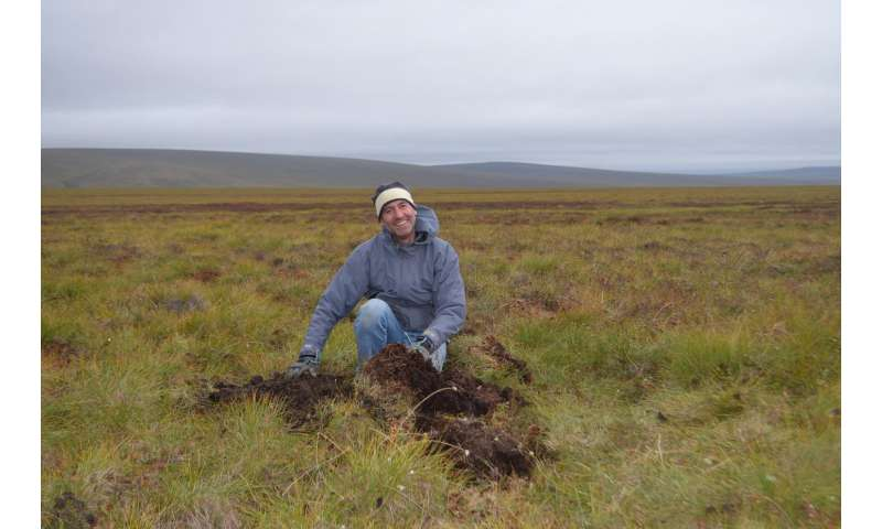 Study finds toxic mercury is accumulating in the Arctic tundra