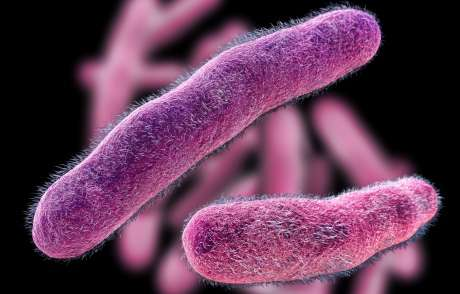 How the microbiome could tackle antibiotic resistant infections in the lungs