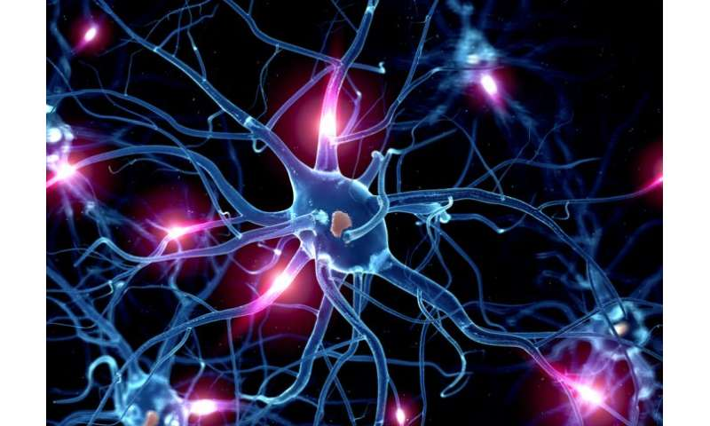 Rethinking serotonin could lead to a shift in psychiatric care