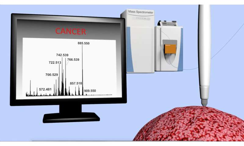 New device accurately identifies cancer in seconds