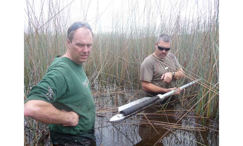 Ancient wetlands offer window into climate change