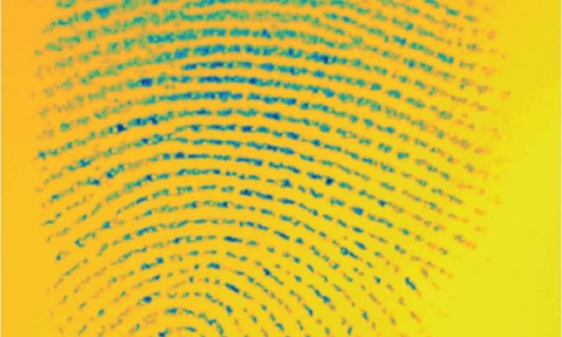 Fingertips found to respond differently to different surfaces