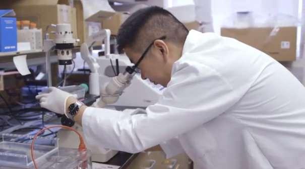 Rare benign tumors hold the 'genetic recipe' to combat diabetes