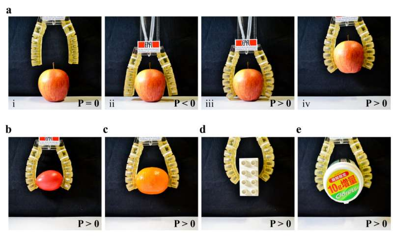 EPFL researchers show edible actuator at IROS 2017