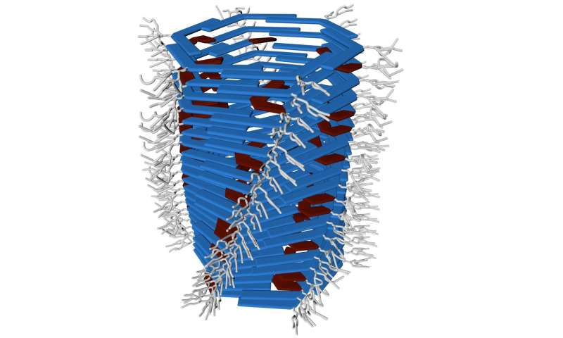 Researchers developing a new type of synthetic molecular machine