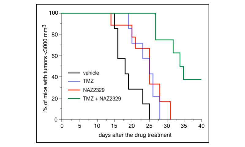 Identification of PTPRZ as a drug target for cancer stem cells in glioblastoma