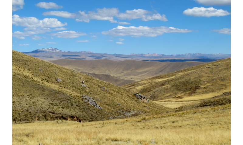 Researchers document early, permananet human settlement in Andes