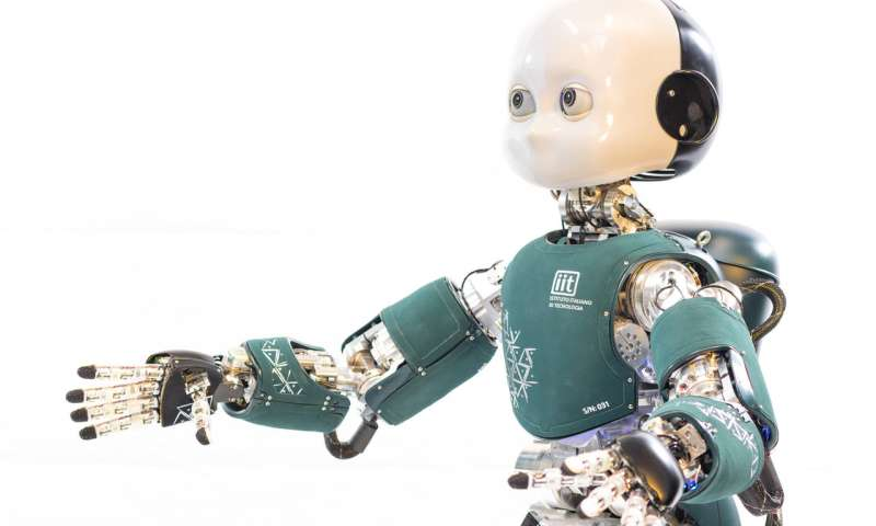 The importance of the robot iCub as a standard robotic research platform for embodied AI