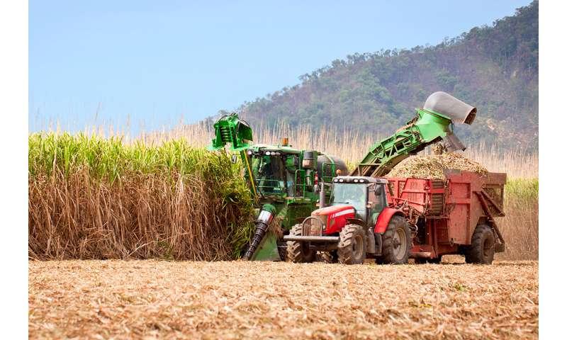 Scientists: Expanding Brazilian sugarcane could dent global CO2 emissions
