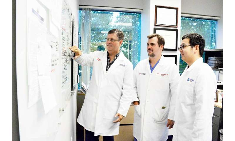 New research on sperm stem cells has implications for male infertility and cancer