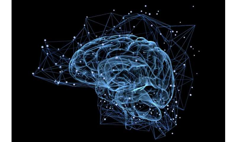 Scientists shed light on the tight connection between mental and physical health