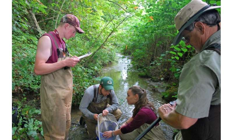 Study highlights conservation needs of fish species recently discovered in Southwest Virginia