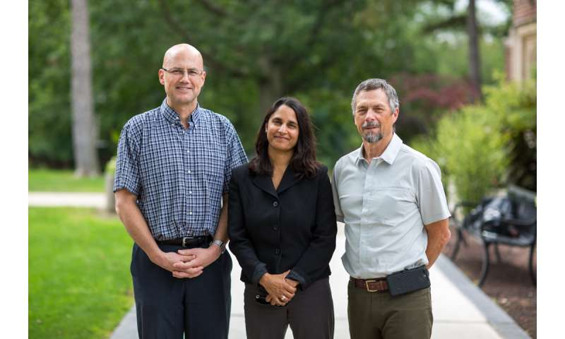 Researchers find combination therapy works best for heart diseases