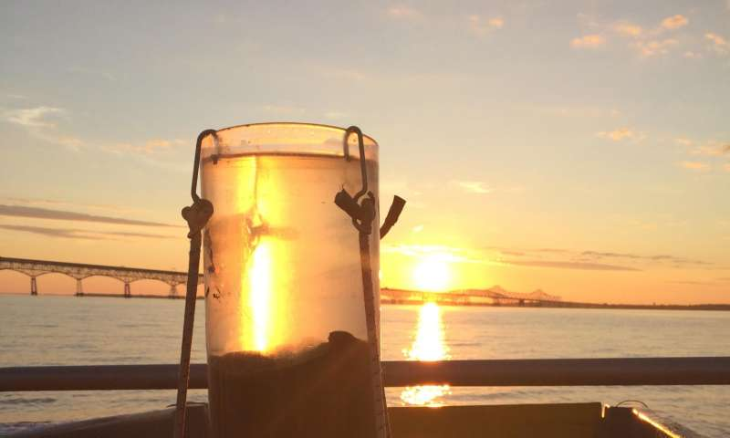 Acid zone in Chesapeake Bay identified