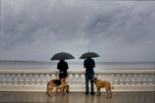 A couple walk their dogs on Bayshore Boulevard in Tampa, Florida, ahead of Hurricane Irma's landfall