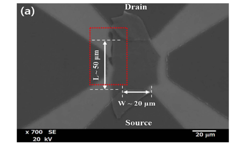 Advanced molybdenum selenide near infrared phototransistors