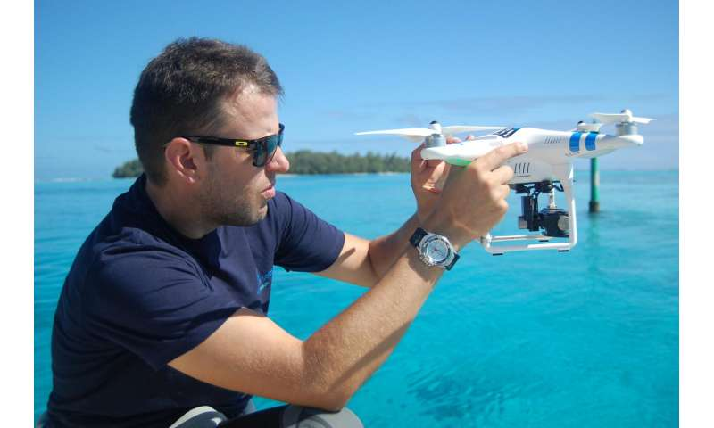 Aerial drones reveal sharks in shallow water