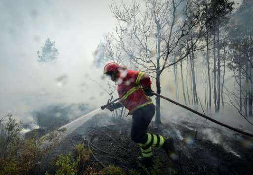 A firefighter in Vale da Ponte, Portugal, which declared three days of mourning after forest fires killed 64 people