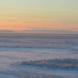Alaska tundra source of early-winter carbon emissions (Update)