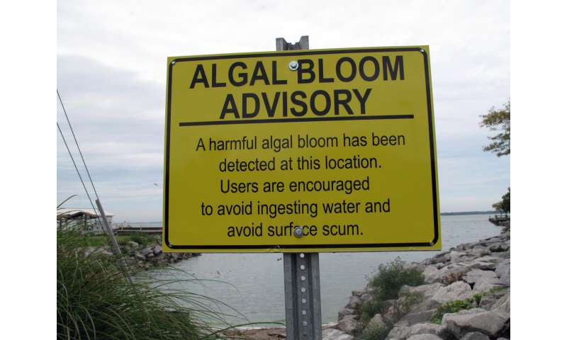 Algal blooms cost Ohio homeowners $152 million over six years