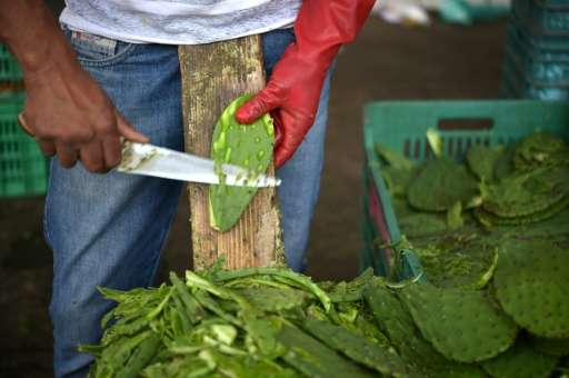 A man prepares nopal to be sold at the nopal market in Milpa Alta borough, Mexico City