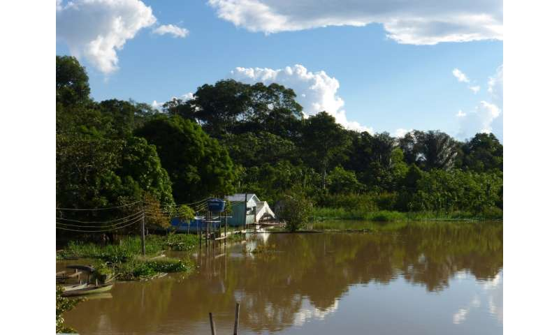 Amazonian hunters deplete wildlife but don't empty forests