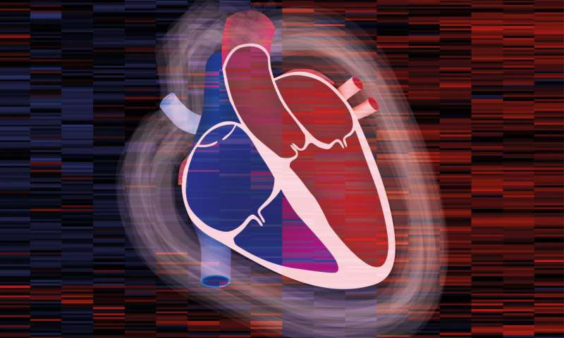An atlas of the heart: Proteome of the human heart mapped for the first time
