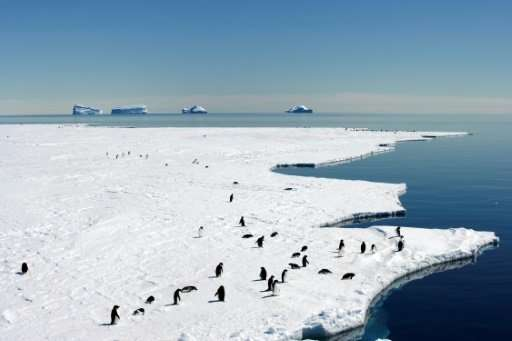 An Australia and France-led push this year to create a second protected area in East Antarctica spanning another one million squ