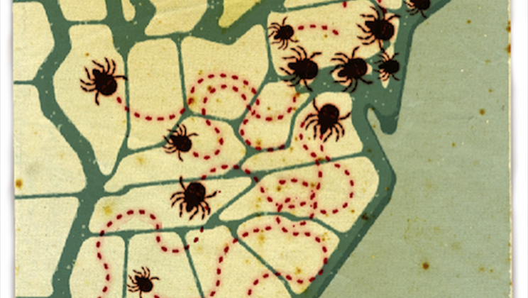Ancient history of Lyme disease revealed with bacterial genomes