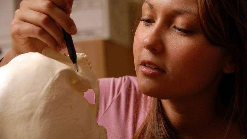 Anciens crânes éclairent la migration dans l'Empire romain
