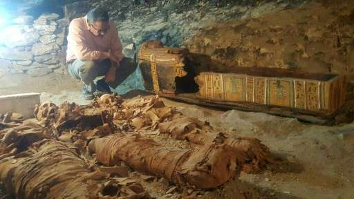 An Egyptian archaeologist inspects three mummies uncovered in an ancient tomb in the Draa Abul Naga necropolis in Luxor in a han
