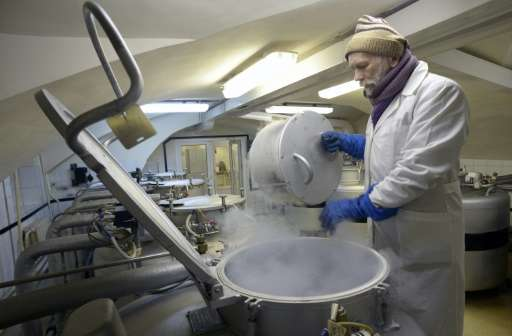 An employee of Russia's Institute of Plant Genetic Resources checks frozen seeds and grafts stored in metal vats in the institut