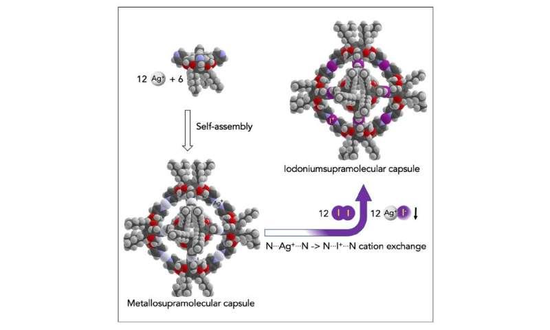 A new nano-sized hexameric molecular capsule