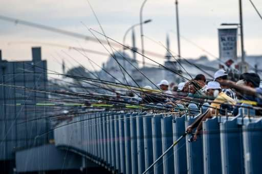 Anglers crammed shoulder-to-shoulder on the Galata Bridge and on the banks of the Bosphorus is one of the iconic images of Istan
