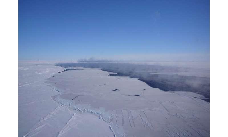 antarcticare