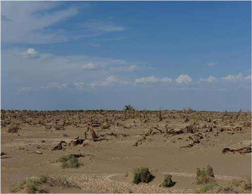 Anthropogenic groundwater extraction impacts climate