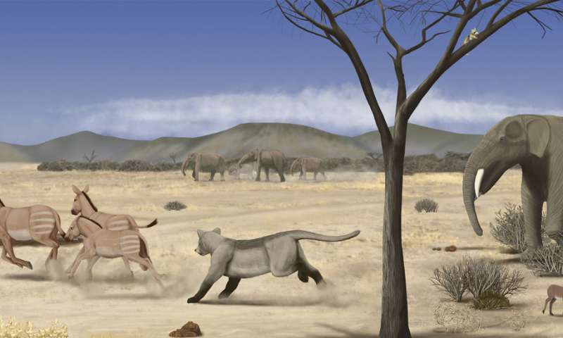 A sub-desert savanna spread across Madrid fourteen million years ago