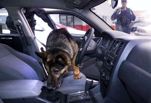 A tool to protect police dogs in drug raids from overdosing