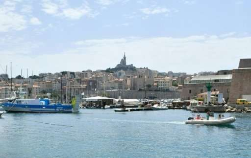A whale seems to have swum into the old port of Marseille