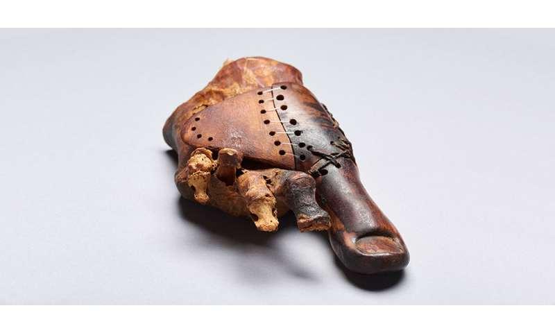 Un bout de bois: les égyptologues suisses étudient une prothèse de 3000 ans