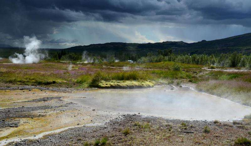 Bacteria from hot springs solve mystery of metabolism