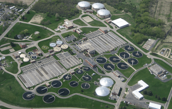 Bacteria may supercharge the future of wastewater treatment