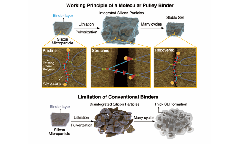 Battery breakthrough using 2016 Nobel Prize molecule