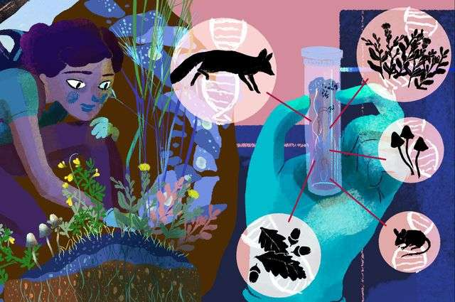 Become a citizen scientist and help preserve California's biodiversity