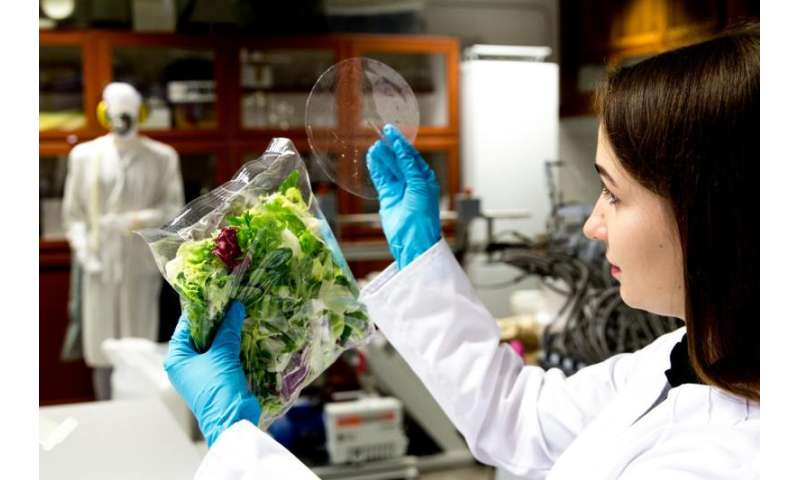 Biodegradable packages will keep your food fresh