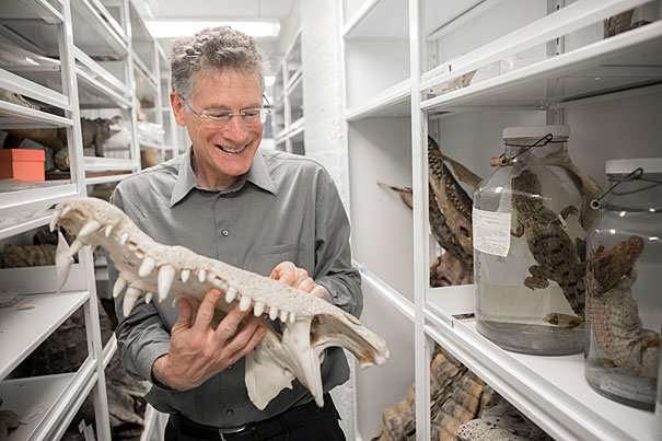 Biologist's new book details a new era in the study of evolution
