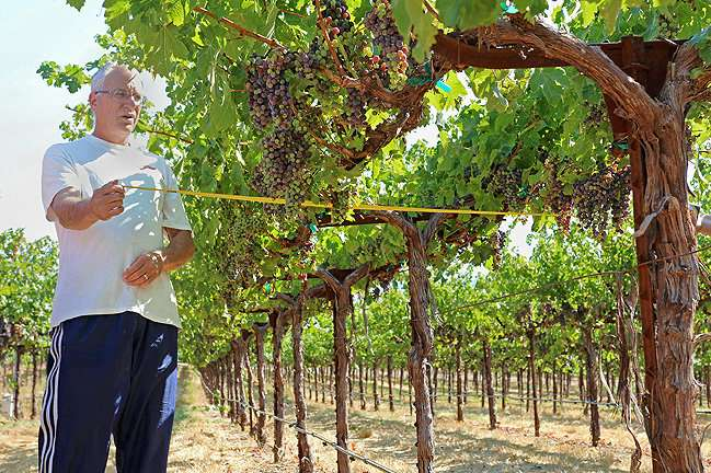 Bringing space technology to water needs in California vineyards